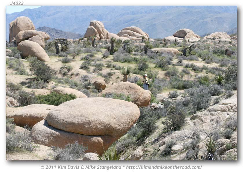 Deep Creek Hot Springs (San Bernardino) - 2019 All You ...